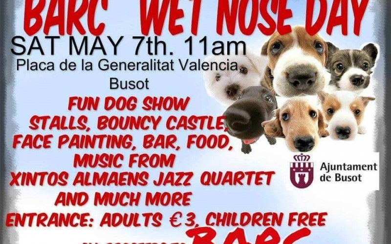 wet nose day