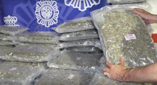 CannabisSpainGardai17may19_large