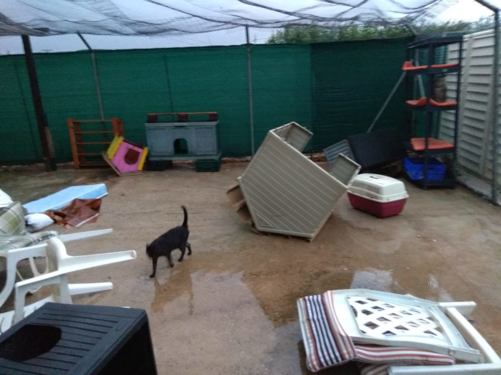 19-09-12_storm-shelter3