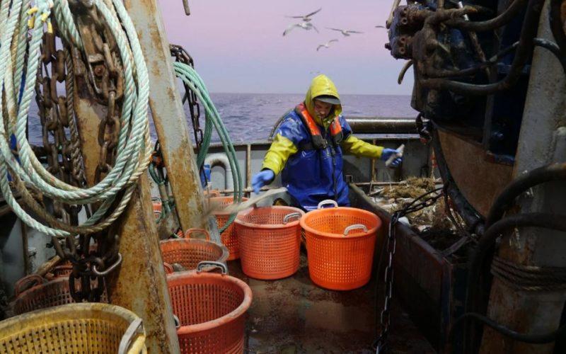 skynews-fishing-channel-brexit_4900144