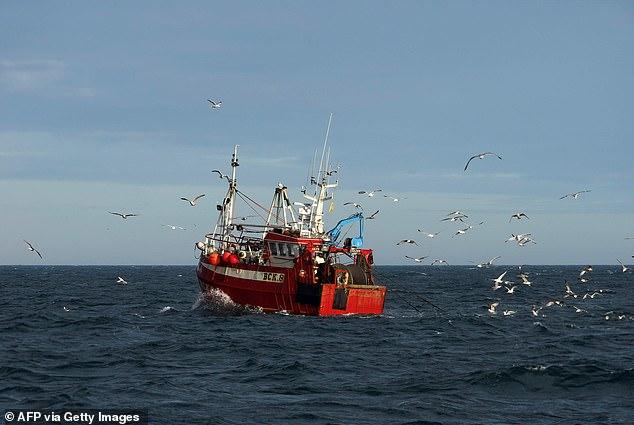 EU Ships
