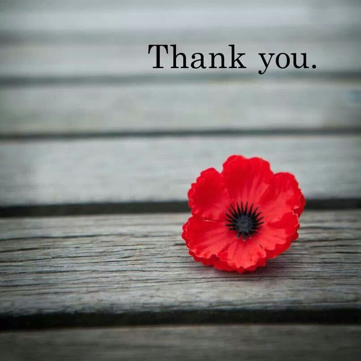 Thank-You-on-Remembrance-Day