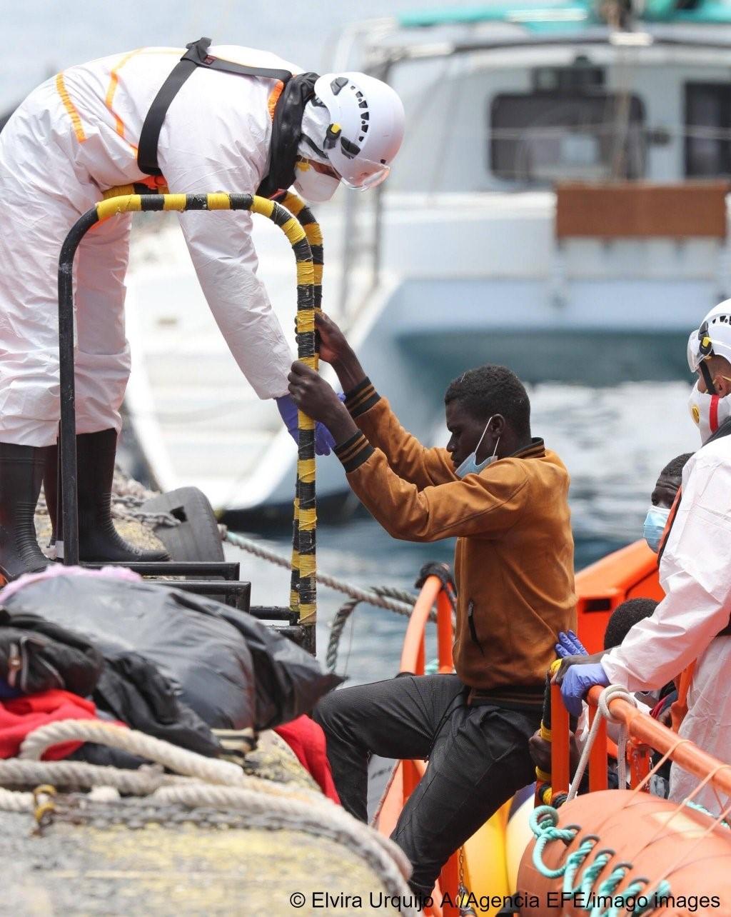 Migrant (bay)